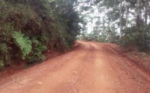 Route-bana-batcha3